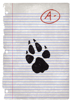 airbud paper