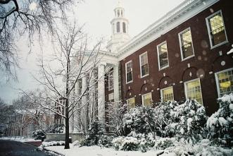 harvard snow